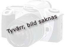 1120-1289_saknas